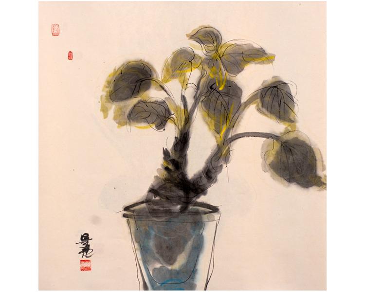 盆花和小矮人卡通图片